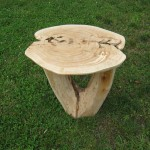Burl top end table