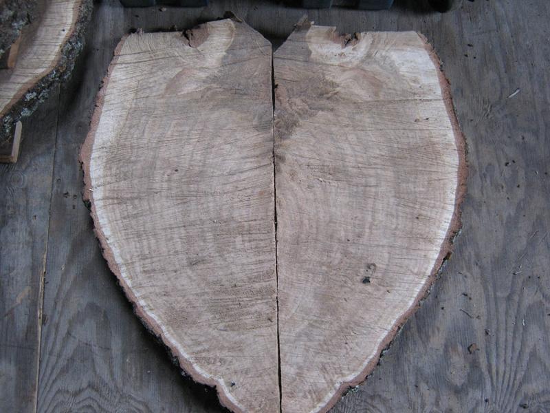 Work in progress black oak burl
